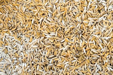 husk: arroz superficie c�scara de arroz