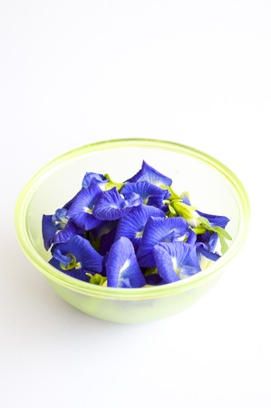 pigeon pea: blue Butterfly pea flower on white background