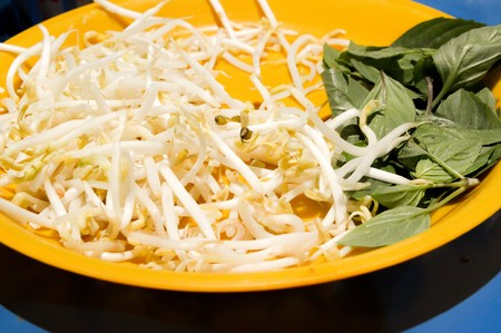 bean sprouts: Bean Sprouts and Basil leaves