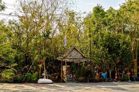 roadway: Garden near roadway, Bangkok, Thailand Editorial