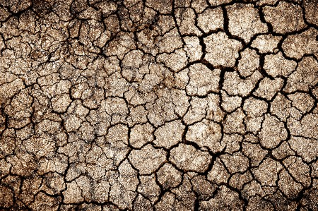 cracked soil in country Thailand photo