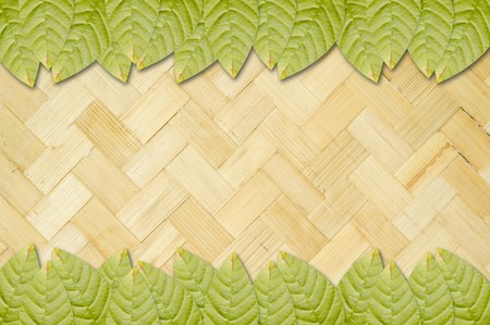 green bamboo: green leaves on bamboo wall