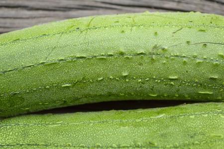 cylindrica: green Sponge Gourd texture Luffa cylindrica Stock Photo