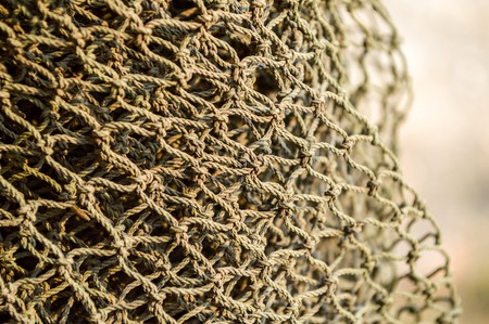 Close-up of a fishing net