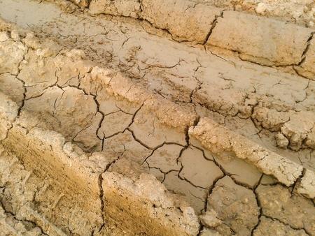 crack: Crack soil