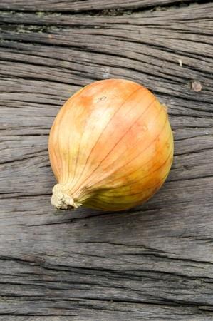 allium cepa: Onion on wooden floor  Allium cepa Linn. Stock Photo