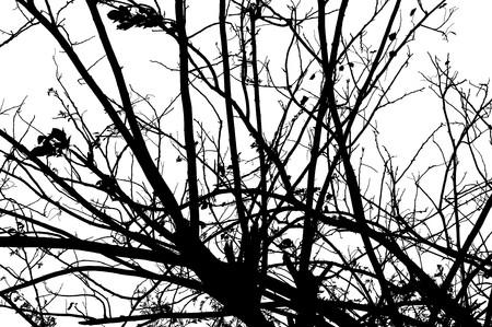 Abstracte taksilhouet Stockfoto - 41474040