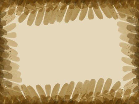 brown tamarind leaves texture background
