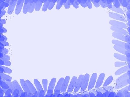 blue tamarind leaves texture background Stok Fotoğraf