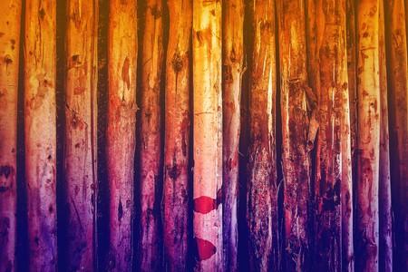 limber: art color of wood log background