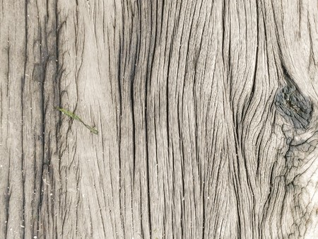 old wooden plank texture background