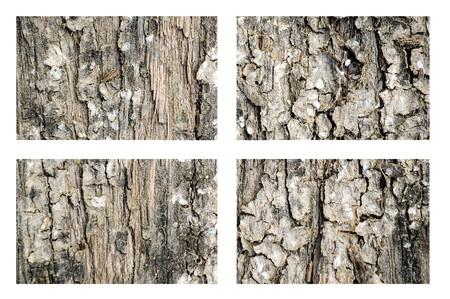 wood plank: grunge wood plank texture background Stock Photo