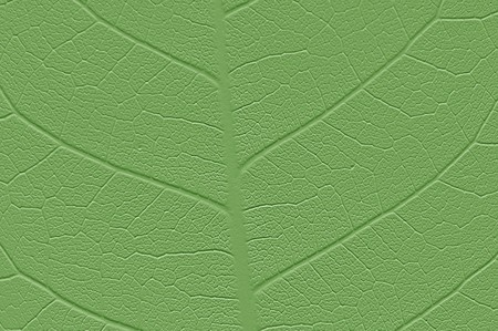 green leaves texture illustration background