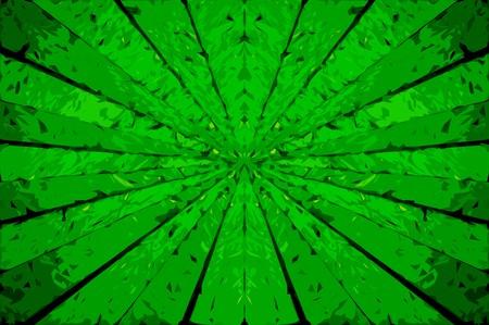 radiate: art green rays abstract pattern illustration background