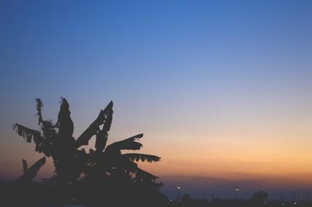 twilight: twilight background Stock Photo