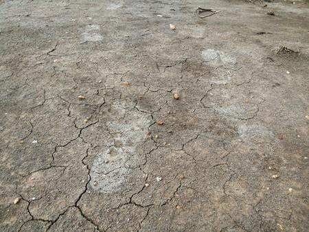 dirty feet: Footprint on the ground