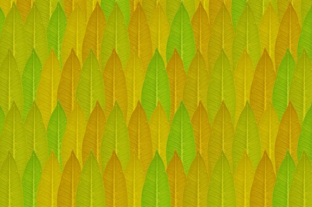 streaked: green leaves pattern background Stock Photo