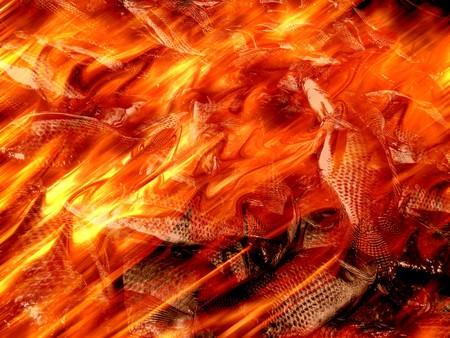 fish fire: fire burning fish