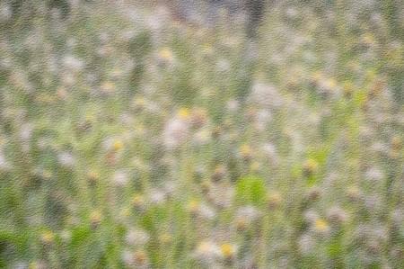art grunge blur flower texture background