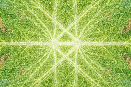 streaked: art grunge green abstract pattern illustration background