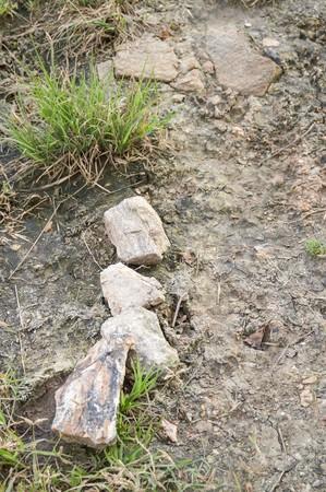 stone on the ground