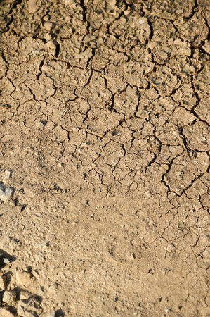 soil texture: dry cracked soil texture background