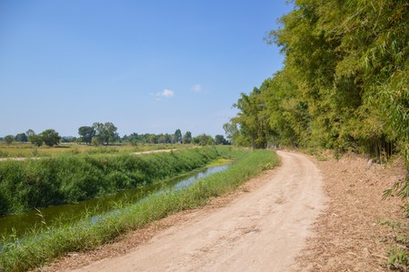 dirt: dirt road in country Thailand Stock Photo