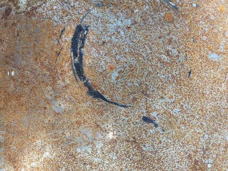 さびた床のテクスチャ 写真素材