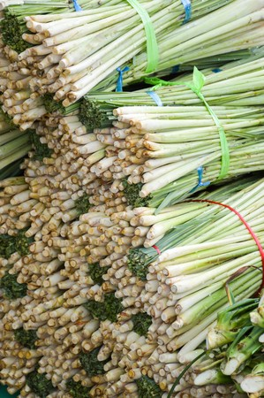 fresh green lemongrass