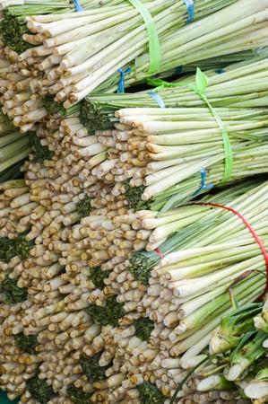 lemongrass: fresh green lemongrass