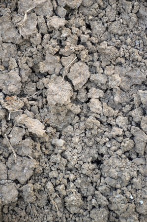 dry cracked soil texture background