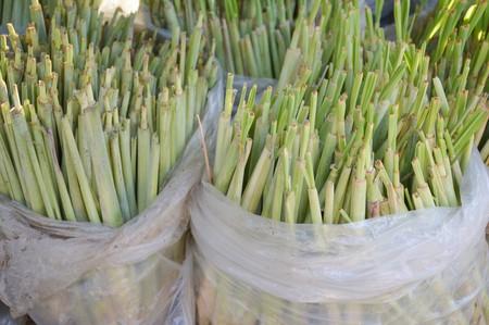 lemongrass: Green lemongrass tree on plastic bag