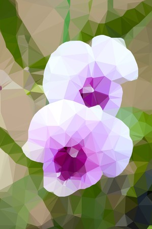 Low polygon orchid flower