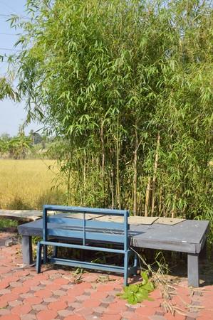 chachoengsao: nature garden in Chachoengsao Thailand Stock Photo
