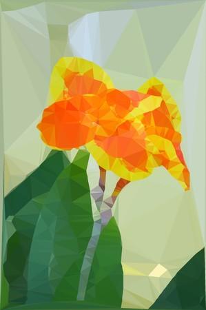 indica: art polygon Canna indica flower