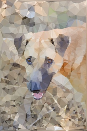 low: Low polygon brown dog Stock Photo