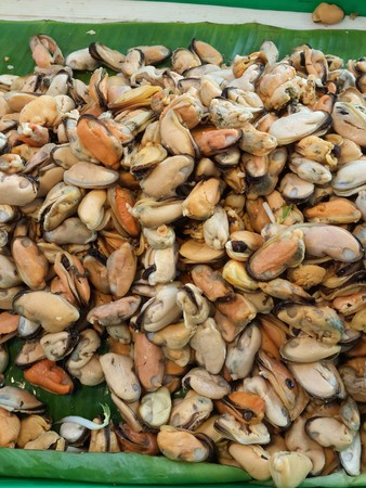 mussels: Asian green mussels from Thailand