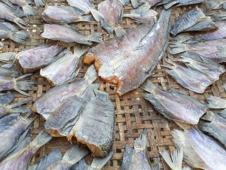 pectoralis: dry Trichopodus pectoralis fish raw food