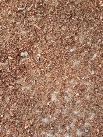 Segatura texture  Archivio Fotografico - 55446435