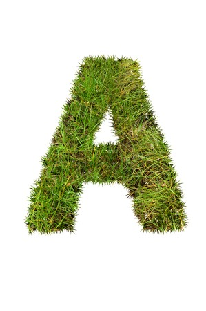 grass font: grass font - A Stock Photo