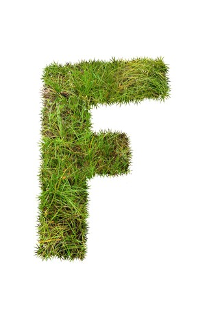 grass font: grass font - F Stock Photo