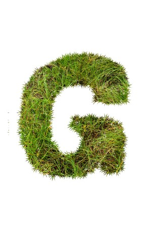 grass font: grass font - G Stock Photo