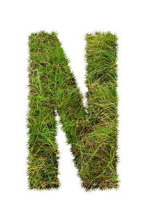 grass font: grass font - N Stock Photo