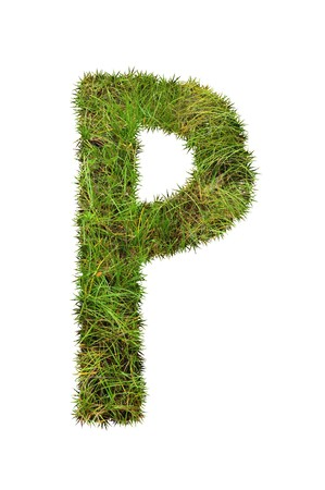 grass font: grass font - P Stock Photo