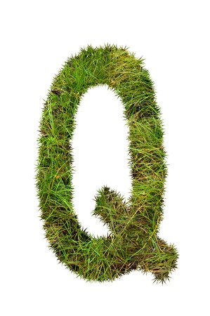 grass font: grass font - Q Stock Photo