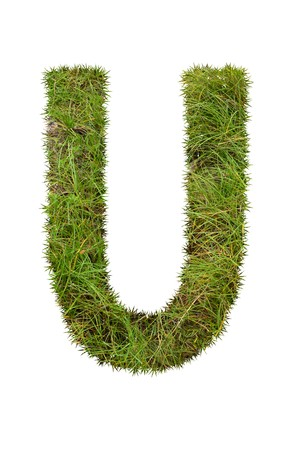 grass font: grass font - U Stock Photo
