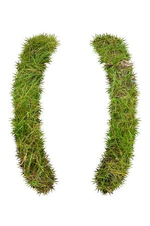 bracket: bracket grass on white background