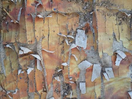 old vinyl tear texture