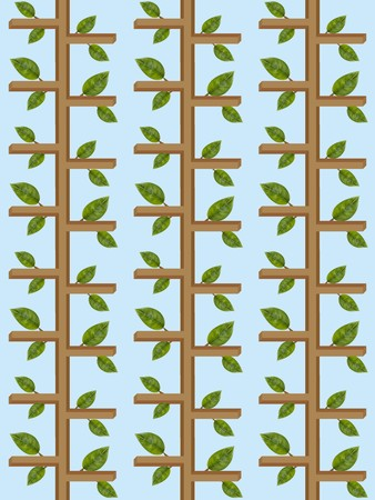 art ivy illustration background Zdjęcie Seryjne - 63693528