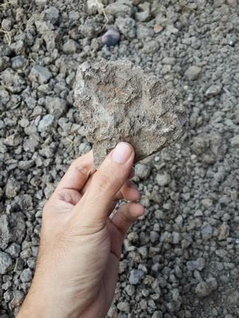 dry soil on man hand Reklamní fotografie